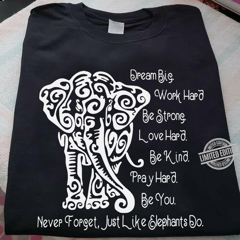 Dream Big Work Hard Be Strong Love Hard Be Kind Pray Hard be You Never Forget Just Like Elephant Do Shirt